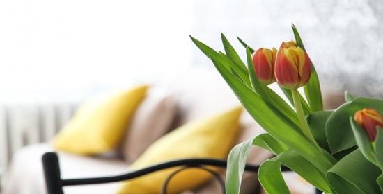 Odśwież mieszkanie na wiosnę